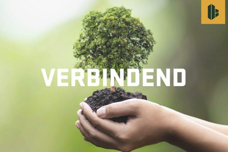 HEUTBOUW schenkt 100 bomen aan de gemeenschap